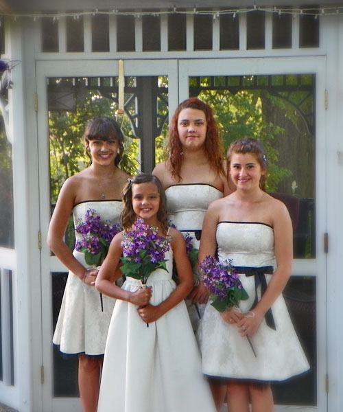Cloran Mansion wedding bridesmaids