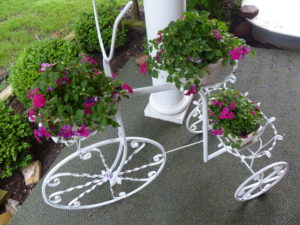 Bicycle planter with pink Impatiens