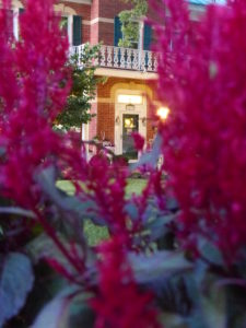 Looking through red blooms at the front door of the Cloran Mansion