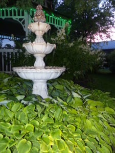 White water fountain with green hostas all around it