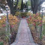 Pumpkins are at the end of a path at Cloran Mansion